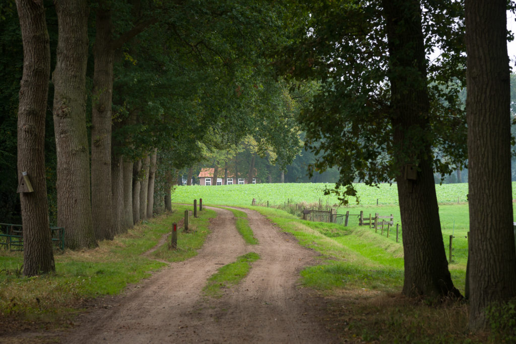 Vakantiewoning Winterswijk